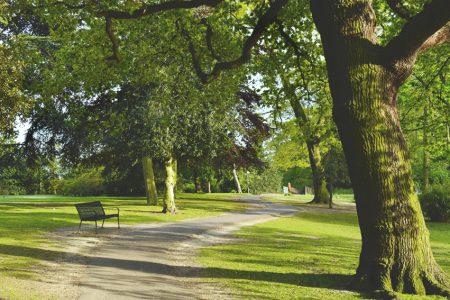 Evidence to Parks Inquiry published